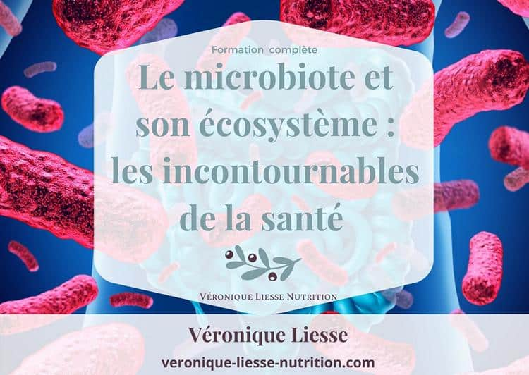 Formation Microbiote et son ecosysteme